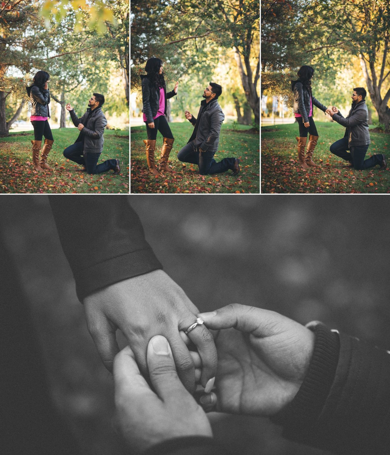 edmonton-wedding-photographers-box-cube-photograph-zubair-amara-engagement 5