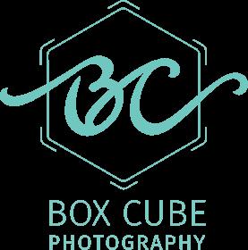 Edmonton Wedding Photographers   Box Cube Photography